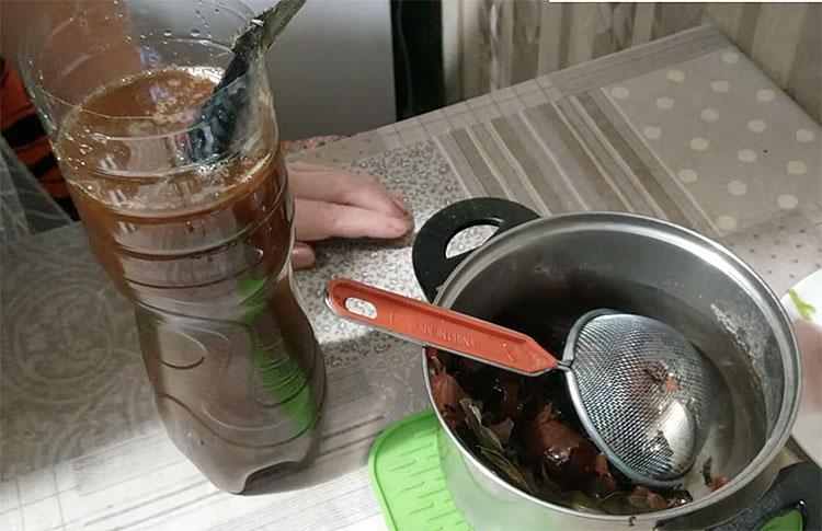 Копчена скумбрія без коптильні: поміщаємо в пляшку і заливаємо цибульний маринад